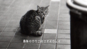 マイウェイ~哀愁日本語版~(Ada-coda)